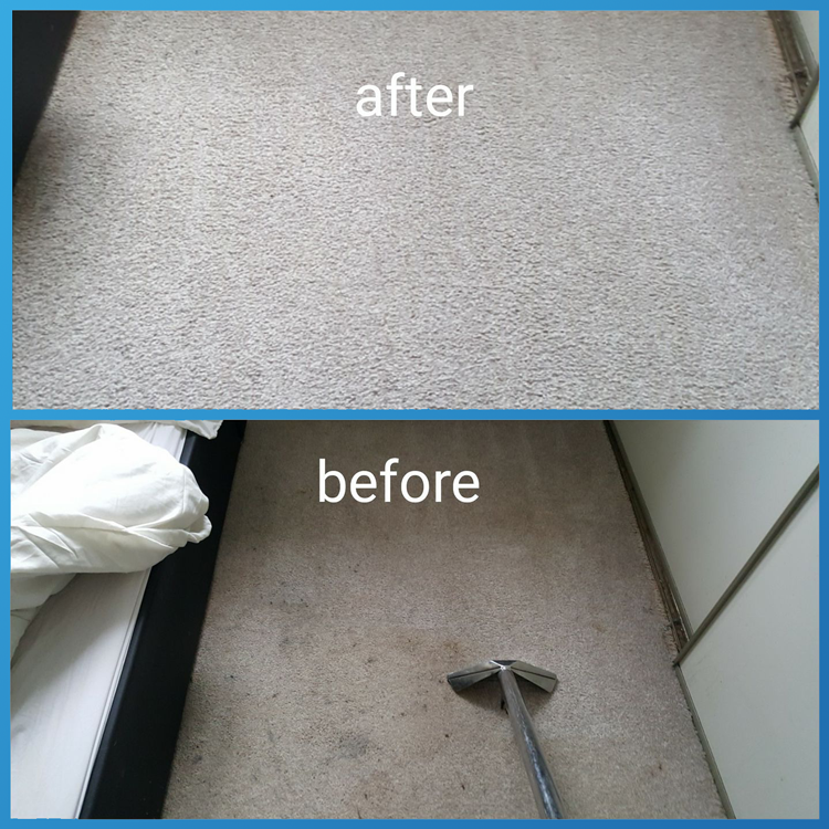 Carpet-Cleaning---02-Clean-1