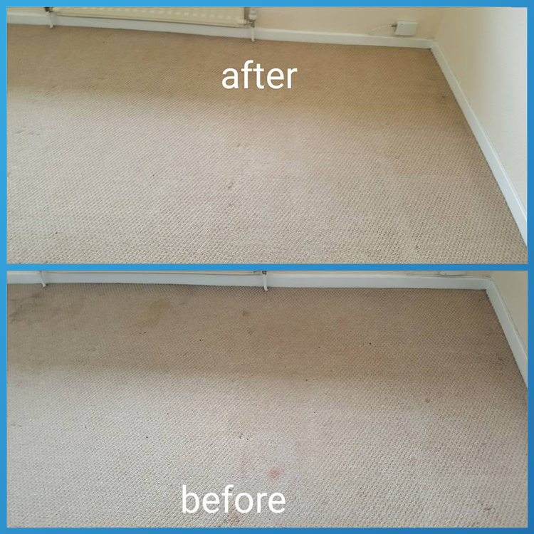 Carpet-Cleaning-02-Clean-3
