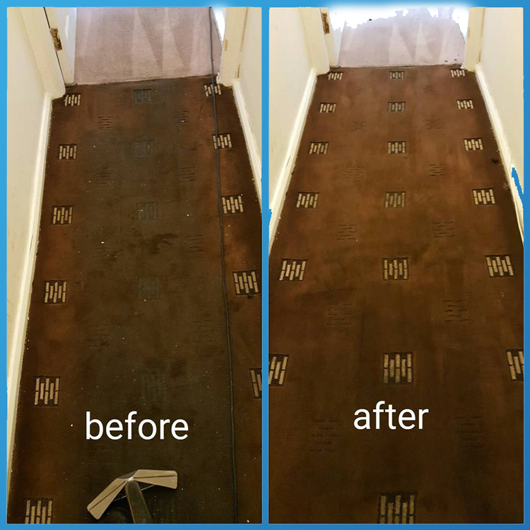 Carpet-Cleaning-02-Clean-5